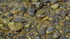 川にある石