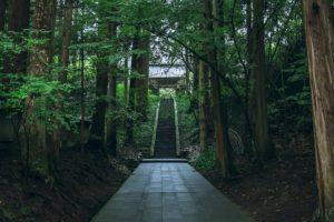 林とお寺の階段
