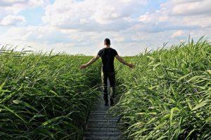 草原を歩く男性