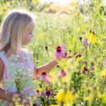 子供時代に戻り楽しく「今を生きる方法」を見つける?ブログにまとめました。
